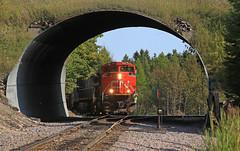 L552 at Powers (GLC 392) Tags: cn canadian national train l552 emd sd70m2 ge c449w bcol 4653 british columbia railway railroad online 8858 powers mi michigan tunnel conductor