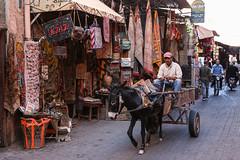Rue Fehl Chidmi, Marrakech (Hector16) Tags: africa october morocco lavilladesorangers unescoworldheritagesite المَغرِب northafrica مراكش berber marrakech kingdomofmorocco marrakesh marrakeshtensiftelhaouz ma