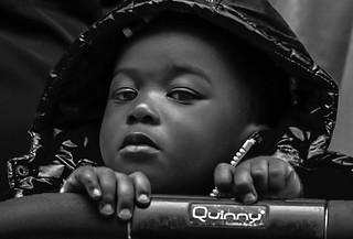 Quinny in Portrait