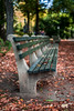 bench bokeh (kderricotte) Tags: sonyfe50mm18 bokeh depthoffield sony sonya7ii bench 50mm leaves fall autumn centralpark nyc newyorkcity