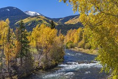 *Autumn in Lake City* (albert.wirtz) Tags: colorado lakecity gunnisonriver sanjuanmountains usa unitedstates vereinigtestaaten nordamerika amerika america albertwirtz herbst herbststimmung autumnmood herbstlicht autumnlight autumn fall autunno turningleaves laubfärbung forest tree sky mountain snow creek natur nature natura landscape herbstlaub buntesherbstlaub gegenlicht backlight lakefolk foliage fallfoliage bright leuchtend yellow blue landscapephotography landschaftsfotografie