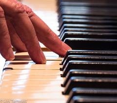 Playing the Piano (11Jewels) Tags: canon tamronsp90mmf28divcusd allisonoflondon piano macromonday memberschoice musicalinstruments