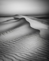 Dreamscapes: Morning Monochrome (grhphotographer) Tags: facebook flickr grhpr whitesandsnationalmonument blackwhite dune landscape sand sunrise dallas tx unitedstates