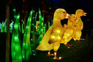 Longleat House, Festival of Light, The Ugly Duckling