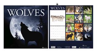Wolf Calendar 2018