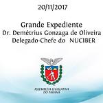 Pronunciamento do Dr. Demétrius Gonzaga de Oliveira - Delegado-Chefe do NUCIBER