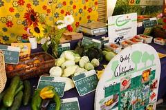 """Abschluss Wandelwoche auf dem Markt der regionalen Möglichkeiten in Kyritz 2017 • <a style=""""font-size:0.8em;"""" href=""""http://www.flickr.com/photos/130033842@N04/37675363354/"""" target=""""_blank"""">View on Flickr</a>"""