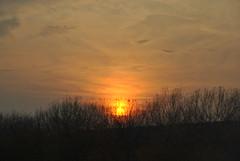 > ultimi bagliori < (Tanja146) Tags: tramonto autunnale cielo sunset зајди сонце
