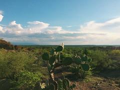 Tatacoa Desert (iezg) Tags: colombia tatacoa desert villavieja neiva bosque seco tropical observatory