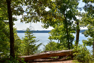 Tims Ford State Park, Tennessee