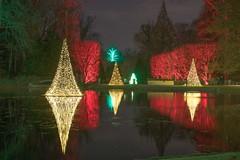 Longwood Lake (Dragonsilk) Tags: christmas lights bright lake longwood holiday celebration longwoodgardens