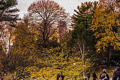 1341_0495FLOP (davidben33) Tags: newyork central park street streetphotos people nature trees bushes leaves colors green yellow blue sky cloud lake portraits women girl cityscape landscape autumn fall 2017 beauty