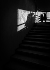 26112017-586A2733 (LIL Scarab) Tags: lille malletstevens maison rehabilitation 23millions bnw bnwphotography insta picoftheday shadow stairs canon canonphotography weekend archi archidaily eos 5dmarkiv ef2470mmf28lusmii reportage north france c cavrois
