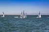 Sailing Lessons (Jill Clardy) Tags: california fest northamerica redwoodcityportfest sanfranciscobay savethebayday usa festival port 201710074b4a5526 sails sailboats sailing lessons