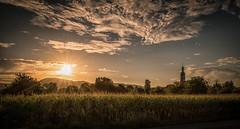 Coucher de soleil à Valff (Mont Saint Odile - Alsace) (glassonlaurent) Tags: coucher de soleil mont saint odile alsace france valff paysage landscape ciel nuage cloud sky sunset