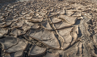Mud cracks in the bed of the Amargosa River, Death Valley