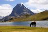Lacs d´Ayous (Jose Andres B) Tags: {agreguesuspalabrasclavedelimitadasporpuntoycoma} jabrbio d´ossau ayous lago lac caballo monte