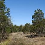 A Cedar Glade thumbnail