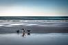 Tres gaviotas (ccc.39) Tags: españa asturias gozón xagó playa orilla agua mar cantábrico gaviotas atardecer