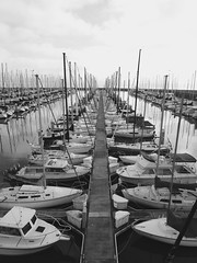 South Beach Harbor San Francisco (samayoukodomo) Tags: djimavicpro mavicpro dronephotography drone aerialview aerialphotography takingthedroneouttogethigh quadcopter slips blackandwhite bw blackwhite dronepointofview birdseyeview droneview aerial