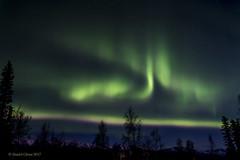 Aurora Borealis (danielusescanon) Tags: backyard northernlights auroraborealis night bigdipper sky