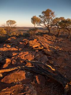 mutawintji - western ridge - 1162