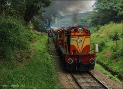 56343 Nilambur Road-Ernakulam passenger.. (Gautham Karthik) Tags: train indianrailways passengertrain nilambur ernakulam alco ers ernakulamlocoshed wdg3a angadippuram chugging railroad trainphotography trainspotting