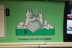 The Perfect Mattress for Furries (Canadian Pacific) Tags: toronto ontario canada canadian city subway ttc metro train casper mattress advert ad advertisement furries 2017aimg4515