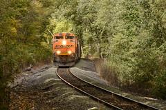 Creeping through the woods. (Machme92) Tags: bnsf burligrton bn bnsfkline hannibalsub hannibal sky emd sd70ace orange nikon nik nikond7200 railroad railfanning railroads railfans rails rail row railroading railfan