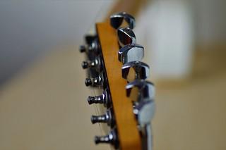 My Guitar - Macro Mondays