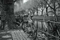 bike@Kö, Düsseldorf 20 (Amselchen) Tags: bicycle water trees mono monochrome bnw blackandwhite bokeh blur dof depthoffield kö düsseldorf season autumn fall sony a7 alpha7 sonyilce7 zeiss carlzeiss sonnar sonnart1855 fe55mmf18za sonnar5518za