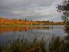 Virginia Water Lake in Autumn-EB160346 (tony.rummery) Tags: autumn autumncolours em10 lake mft microfourthirds omd olympus reflections surrey trees virginiawater runnymededistrict england unitedkingdom gb
