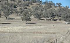 1728 Werris Creek Road, Werris Creek NSW
