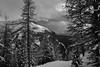 Snow-covered trees and mountain (drafiei1) Tags: snow snowcovered trees tree texture mountain sky lakelouise banff banffnationalpark landscape blackandwhite