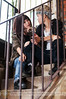 Dating in the stairs - behind bars (Hosting and Web Development) Tags: couple portrait love lgbt nikon lesbian baluster stairs