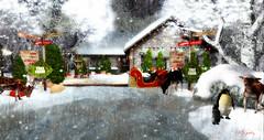 Majesty- Cozy Cottage Christmas Series (Ebony (Owner Of Majesty)) Tags: chezmoi chezmoifurniture cosmopolitan trèschic limit8 trompeloeil collabor88 jian wereclosed hpmd hayabusadesign 3dtrees dustbunny tannenbaum tannenbaumholidaymarket soy botanical bestweather majesty majestysl majesty2017 landscaping landscape majestyholiday majestyholidays majestylandscapes homedecor homeandgarden homes home homesweethome homey winter winterwonderland snow holidayseason holidays christmas christmasspirit christmasseason sl secondlife seasons mesh virtual virtualliving virtualservices virtualspaces videogames