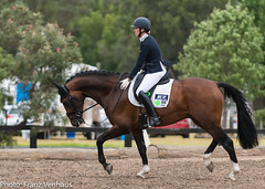 171202_Clarendon_YH-2873.jpg (FranzVenhaus) Tags: younghorses athletes spectatorsvolunteers dressage supporters riders horses officials equestrian sydney newsouthwales australia aus