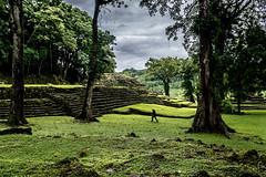 Maya ruin of Yaxchilan. Chiapas, Mexico (ravalli1) Tags: chiapas yaxchilan mexico maya selvalacandona usumacinta history archeology art civilization 2017 nikon sigma