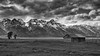 Day 1Tetons DSC_705700019June 18, 2017-Edit.jpg (ColinDixon) Tags: nationalpark usa landscape grandtetons lanscapes