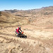 South Africa & Lesotho 24