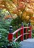 Bridge of Dreams (~~J) Tags: red purity wisdom sacrednature japanesemaple bridge guzei zen orange yellow green autumn