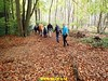"""2017-11-08  Huizen 25 Km (98) • <a style=""""font-size:0.8em;"""" href=""""http://www.flickr.com/photos/118469228@N03/24408724008/"""" target=""""_blank"""">View on Flickr</a>"""