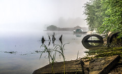 Milky view (kud4ipad) Tags: 2016 prokhorovka tree morning fog mist river water boat shore bank plant reflection hdr