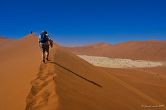 Hiking up the dune (NettyA) Tags: 2017 africa deadvlei namibia sonya7r sossusvlei hiking sand sanddunes travel windy namibnaukluftnationalpark namibdesert desert arid