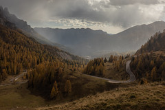 Have You Ever Seen the Rain (Andrew G Robertson) Tags: dolomiti dolomites rolle pass passo rain autumn fall valley pale di san martino italy alps tyrol storm parco naturale paneveggio national park canon 5d mkiv mk4 natural forext golden fir tree spruce silver larch beech swiss pine south