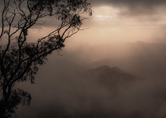 """..""""nature's peace will flow into you.. (dawn.tranter) Tags: dawntranter mountains sunrise pointlookout newenglandnationalpark australia cloud mist nature peace you sunshine trees"""