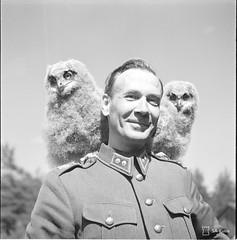 27020 (www.ilkkajukarainen.fi) Tags: suomi suomi100 finland finlande war sota sakuva joutseno birds linnnut owls pöllö pöllöt everstiluutnanti laaksonen 1941 army