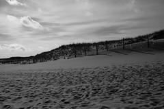 """The Story of Sand"" (Photography by Sharon Farrell) Tags: ibsp islandbeachstatepark islandbeach islandbeachnorthernnaturalarea islandbeachstateparknewjersey ibspnj sand sanddunes dunes beach jerseyindecember jerseyshore jersey newjersey barrierisland atlanticcoastline downtheshore atlanticseaboard oceancountynewjersey oceancounty blackandwhite blackwhite bw noiretblanc monochrome shadows"