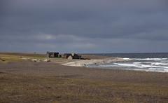 Fårö (Yvonne L Sweden) Tags: fårö october beach cloud sweden fiskebodar sea gotland waves