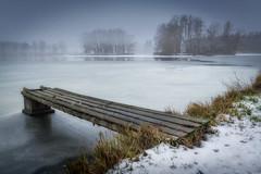 lonely swan (Hans Zitzler) Tags: pond lake frozen blue swan cold teublitz bavaria nikon sigma 35mm abigfave